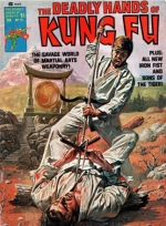 Deadly Hands of Kung Fu vol 1 # 21