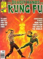 Deadly Hands of Kung Fu vol 1 # 24